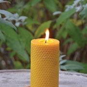 Fallen-Fruits-Large-Beeswax-Candle-0-0