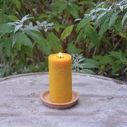Fallen-Fruits-Large-Beeswax-Candle-0-1